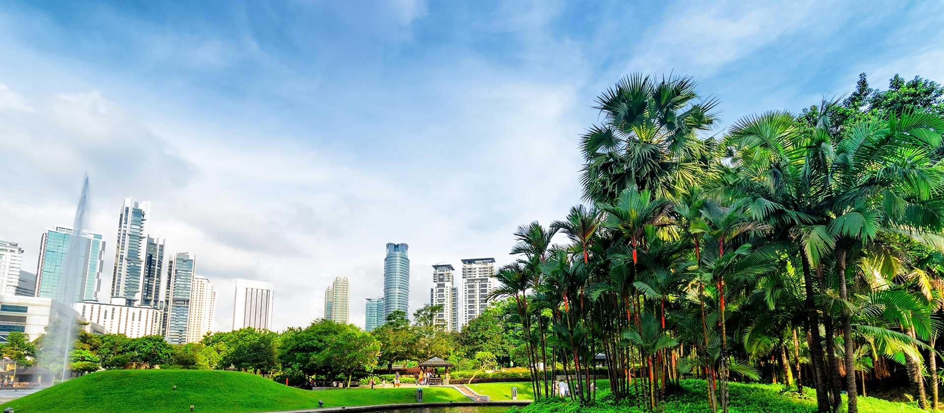 International Cadaveric Pelvic Sarcoma Course – Kuala Lumpur 2018