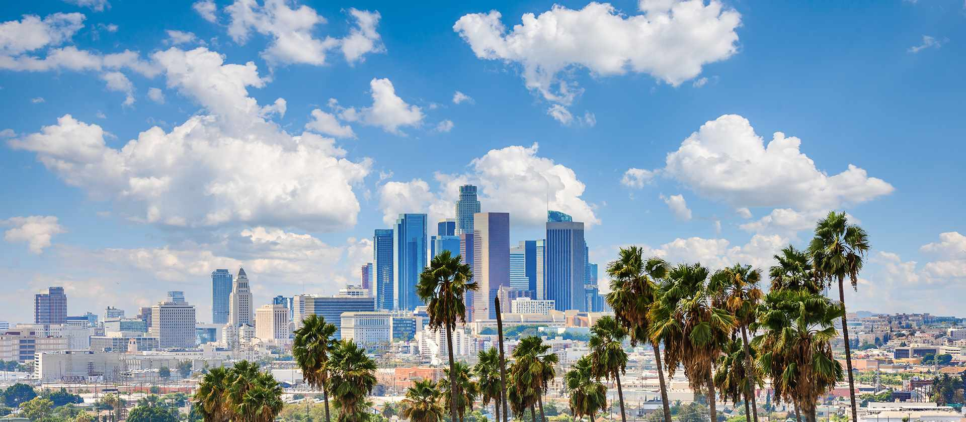 21th General Meeting of ISOLS – Los Angeles 2021